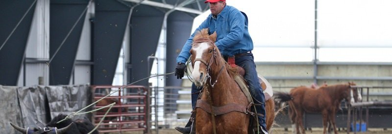 equestrian-riding-roping-arena-fabric-building_Canada